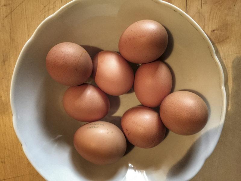 Eier in einer Schüssel für die Kaspressknödel