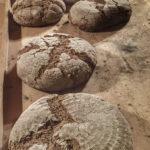 Das gebackene Roggenvollkorn-Sauerteigbrot