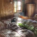 Unser Schlafzimmer auf der Kalchkendlalm mit der Katze Socke