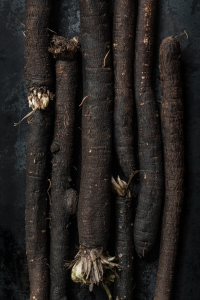 Salsify Detail