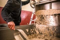 Nach dem Schälen kommt der Sesam erst einmal in ein Salzbad.